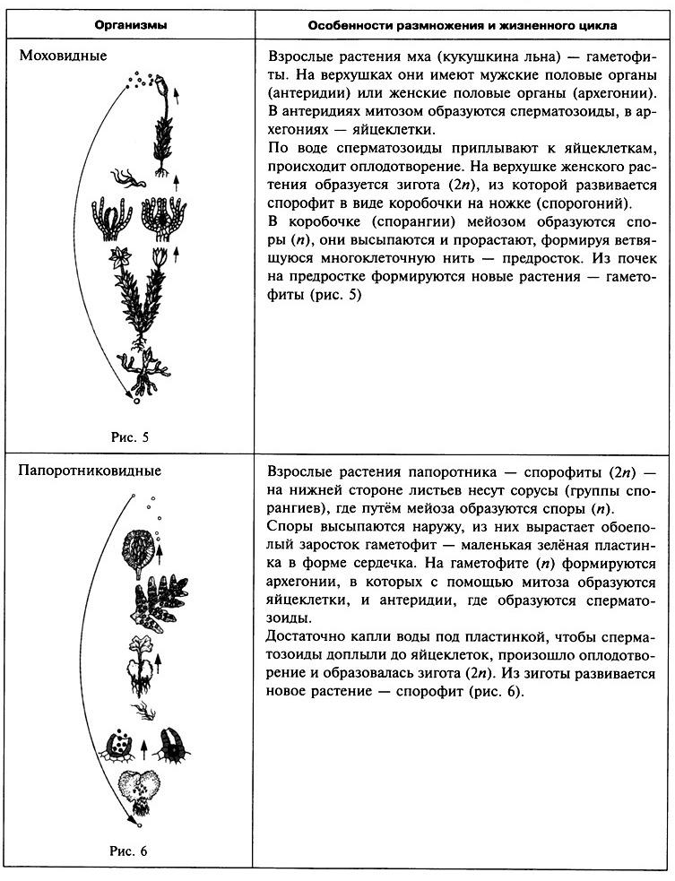 2.2. Признаки живых организмов. Наследственность и изменчивость